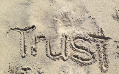 Team coaching and Leadership: How to work with a team where the trust has gone
